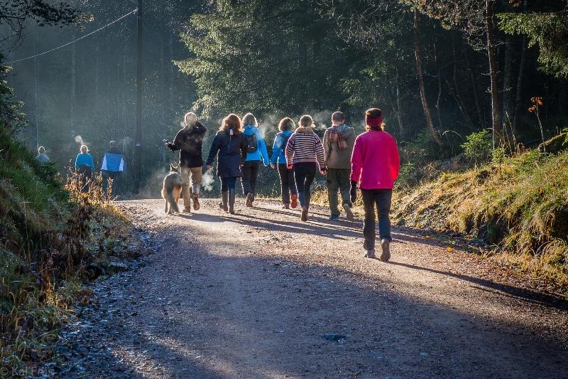 Dors camminare in gruppo fa davvero bene alla salute for Camminare in piani di progettazione dispensa